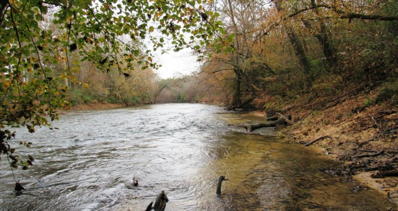 west-view-locust-fork-river
